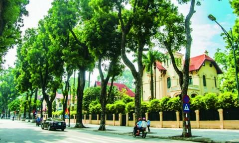 Kiến trúc nhà phố hiện nay – Thực trạng và đề xuất