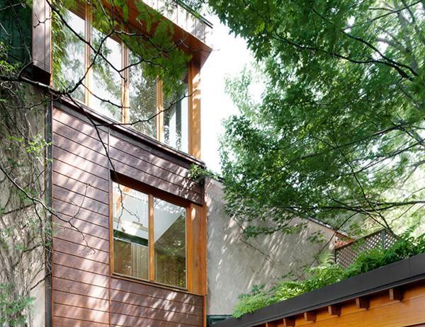 Những hàng cây xanh tạo ra bóng râm ngăn cản đáng kể bức xạ nhiệt mà mặt trời chiếu xuống ngôi nhà, giúp không gian bên trong luôn mát mẻ
