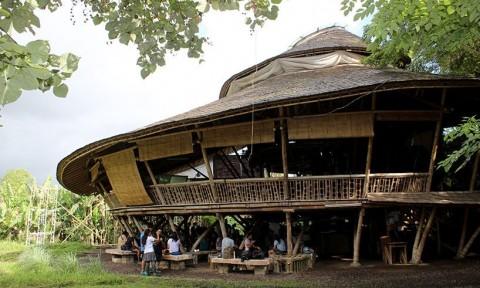 Khóa học Bamboo U hướng đến giáo dục xây dựng bền vững bằng tre