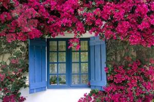 Những lưu ý giúp sơn tường nhà bền màu