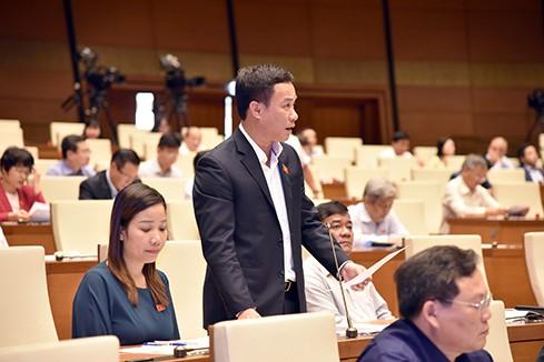 Đại biểu Triệu Thế Hùng phát biểu tại phiên thảo luận (ảnh: Quochoi.vn)