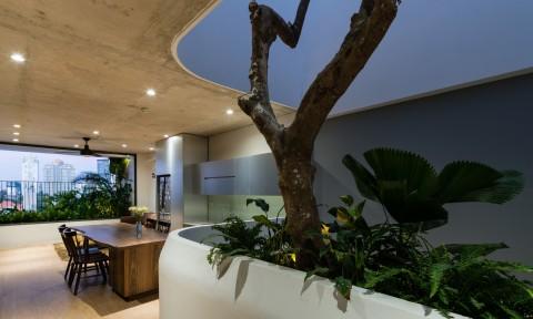Căn hộ HQL – Nét mới trong lĩnh vực thiết kế nhà phố / H2