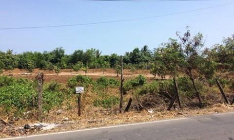 Đất lô lớn ở Cần Giờ được hét giá trăm tỷ