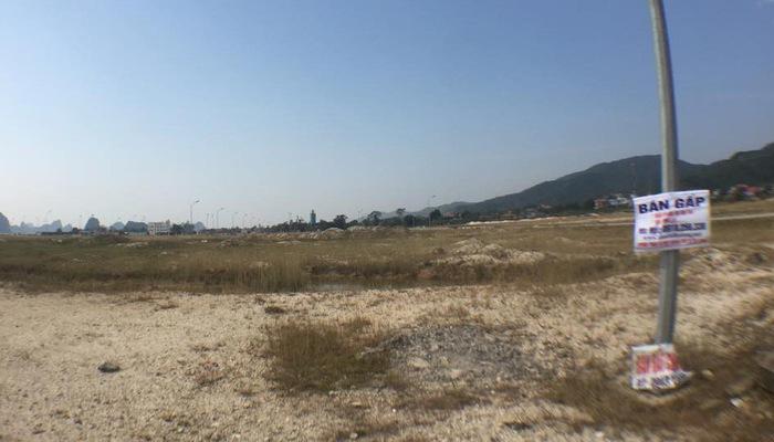 Rao bán đất ở Vân Đồn - Quảng Ninh - Ảnh: NH