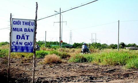 """Đất nền vùng TP Hồ Chí Minh: Chững lại chờ """"hồi sóng"""""""