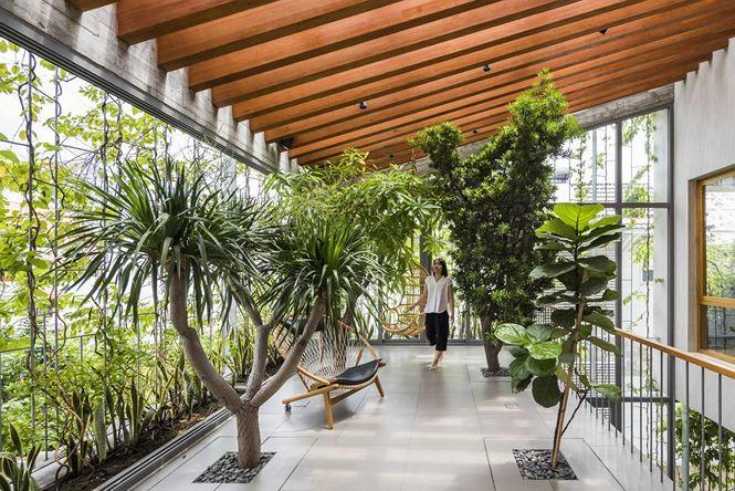 Ngôi nhà tràn ngập cây xanh như một công viên thu nhỏ