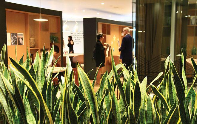 Không gian làm việc chung đang tạo nên xu hướng thuê văn phòng mới