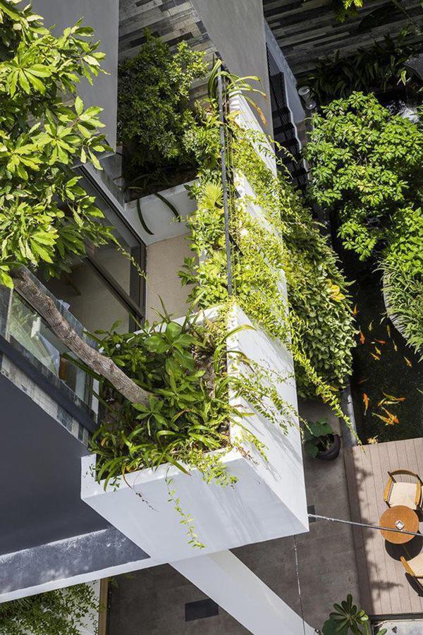 Cây trồng bố trí hợp lý và khéo léo, hệ thống bơm nước giấu bên dưới tường cung cấp đủ nước cho cây phát triển