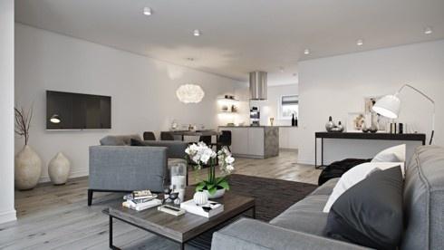 Các cấp độ màu xám tạo nên sự kết hợp nhẹ nhàng giữa phòng khách và nhà bếp