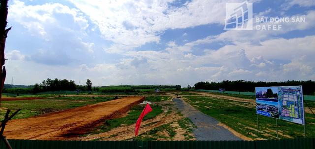 Nhiều doanh nghiệp địa ốc tìm về thị trường nơi đây để đón đầu bằng các dự án đất nền quy mô. Ảnh: Hạ Vy