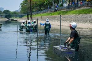 78% nước thải của Hà Nội đang xả thẳng ra môi trường