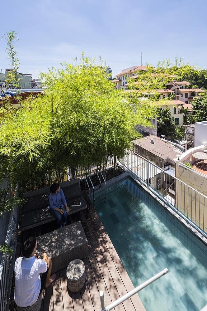 Bể bơi và ghế đọc sách đặt dưới bóng mát của tre trồng trên sân thượng.