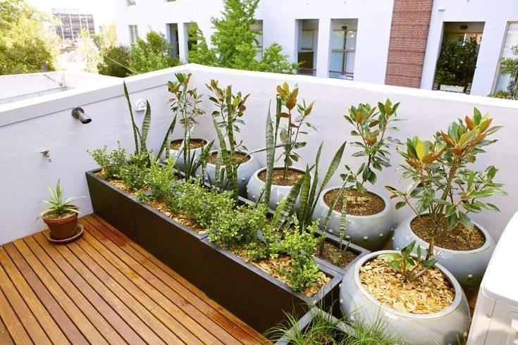 Nếu có thời gian chăm chút cho khu vườn, bạn hoàn toàn có thể lựa chọn lát gỗ