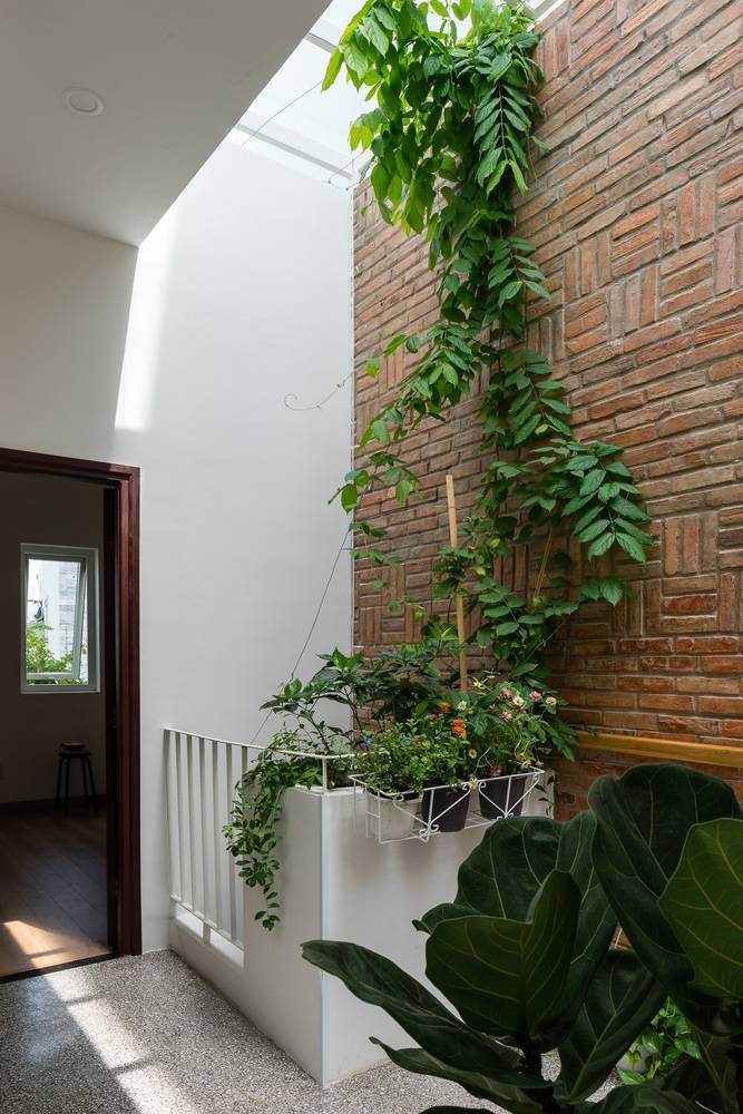 Đặc biệt gia chủ còn tận dụng hàng lang tầng 2 làm thành khu vườn nhỏ xinh rất bắt mắt