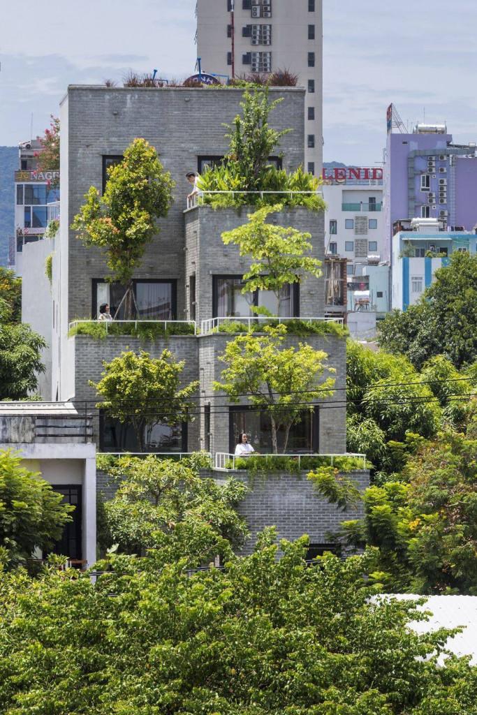 Màu xanh từ thiên nhiên như làm nổi bật và tạo sự khác biệt cho công trình với kiến trúc xung quanh