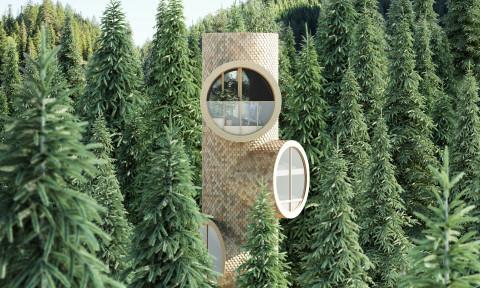 Bert – Nhà cây lấy cảm hứng từ hình tượng nhân vật hoạt hình