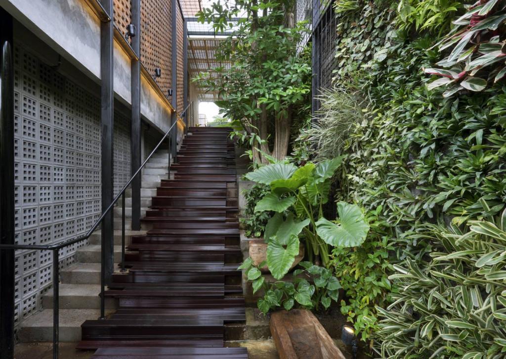"""Lối đi lên khu vực chung của căn nhà tuyệt đẹp với một """"vườn treo"""" trên tường"""