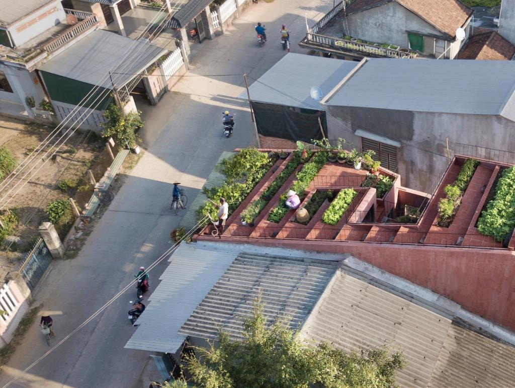 Vườn rau dạng bậc thang giúp gia chủ dễ di chuyển, tạo độ dốc thoát nước và hài hòa với bối cảnh xung quanh