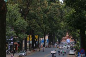 Lắng nghe người dân hiến kế: Tạo mảng xanh cho thành phố