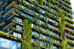 Bản chất của kinh doanh là phát triển bền vững