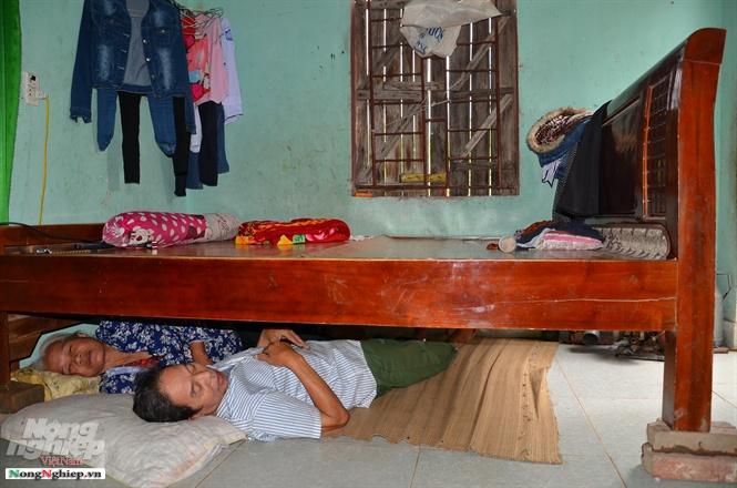 Một cặp vợ chồng già ở Hải Phòng mùa hè thường phải nằm dưới gầm giường vì nhà quá thấp, nóng