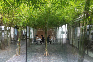 Làm việc trong vườn tre tại MIA Design Studio – Không gian làm việc độc đáo