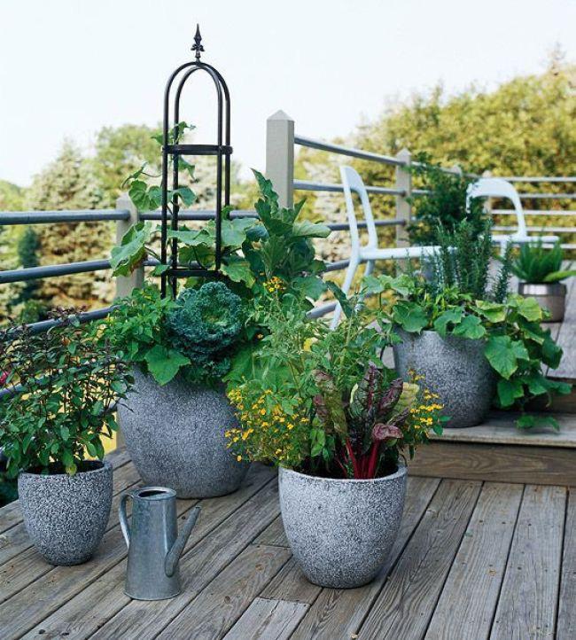 Nếu bạn không muốn vườn rau của mình trông nhàm chán, hãy tận dụng trồng trọt trong những thùng chứa cao vượt trội. Nhóm các thùng chứa lớn và nhỏ lại với nhau, điều này sẽ tạo ra một sự hấp dẫn trực quan.