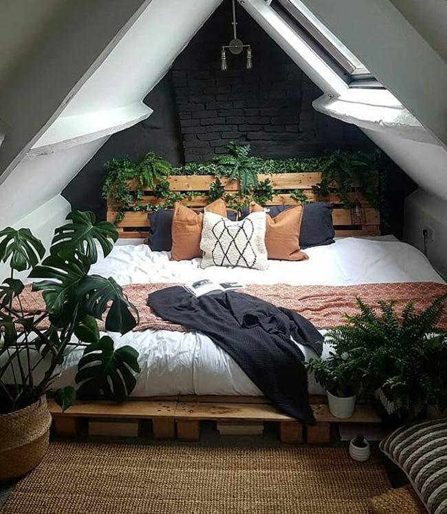 Thực vật tạo ra oxy và lọc không khí, đó là điều bạn muốn trong một căn phòng nơi bạn dành quá nhiều thời gian. Chúng sẽ giúp bạn thở tốt hơn, do đó ngủ ngon hơn.