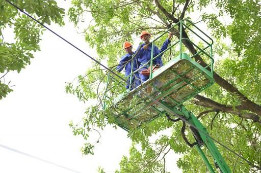 Công nhân công ty TNHH MTV Công viên Cây xanh Hà Nội thực hiện cắt tỉa cây trước mùa mưa bão