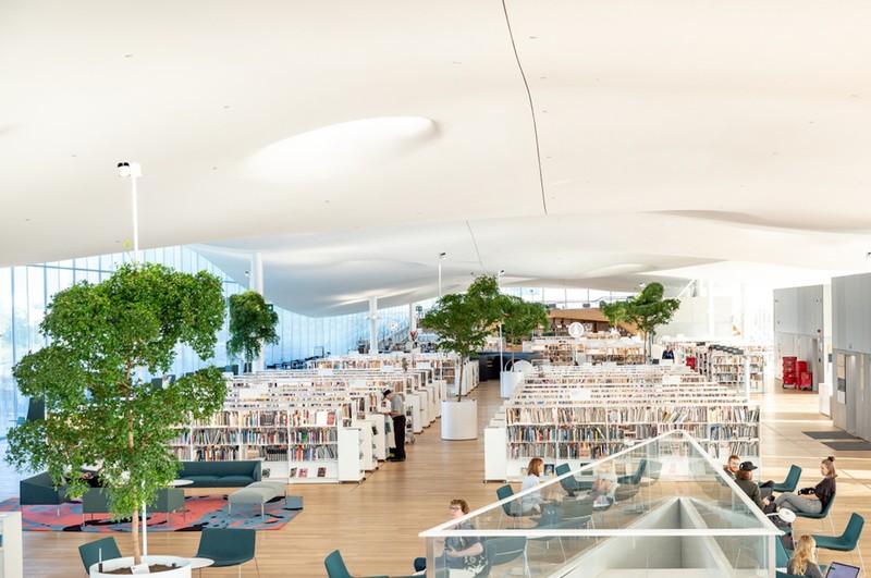 Điều này có được nhờ vào Đạo luật Thư viện Phần Lan mang tính cách mạng, giúp tích cực thúc đẩy việc học tập suốt đời và mang lại cho các thư viện một vai trò cơ bản trong xã hội.