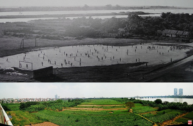 Ảnh của Hữu Cấy năm 1955 về bãi đá bóng Long Biên cho thấy bãi giữa sông Hồng khi đó chỉ là một doi đất nhỏ. Đến năm 2018, khu vực bãi giữa đã là một cánh đồng rộng gần 100 ha.