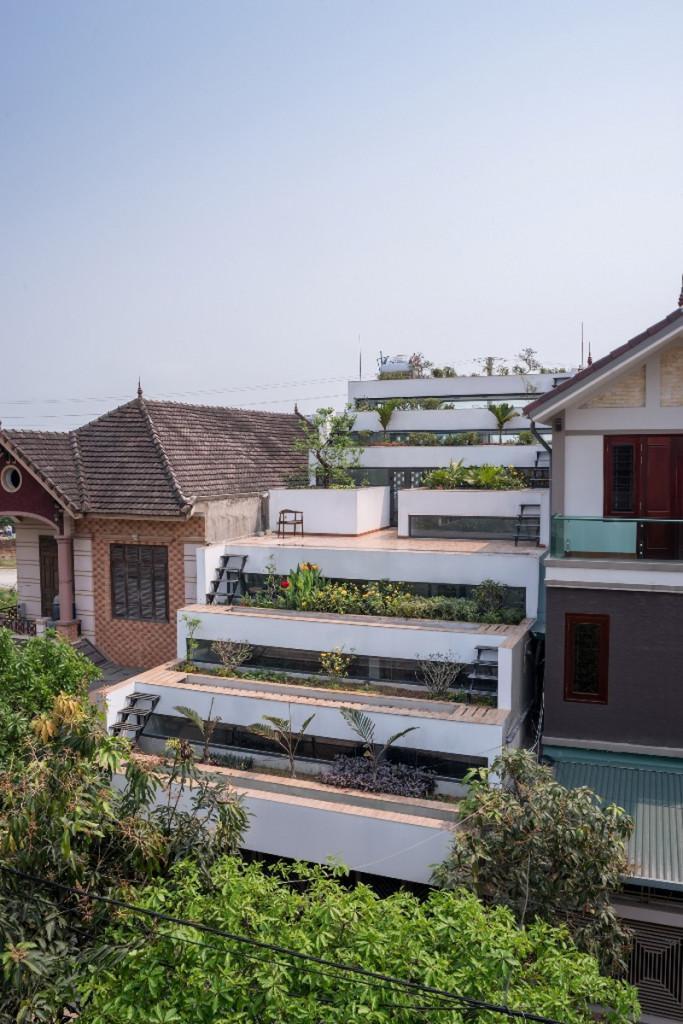 Ngoài trồng rau, chủ nhà trồng hoa và các loại cây cảnh giúp cho ngôi nhà trở nên sinh động hơn
