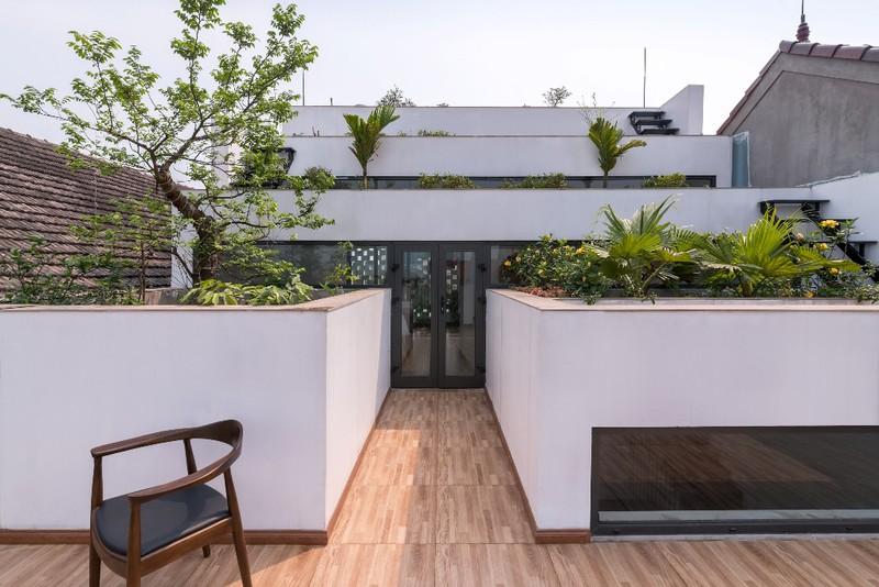 Ngôi nhà luôn ngập tràn ánh sáng từ các khoảng tường kính ở giữa những thửa ruộng