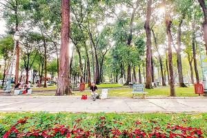 Tuân thủ quy hoạch để phát triển mảng xanh đô thị