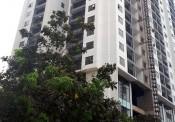 Thị trường bất động sản: Nhà ở bình dân, cầu ngóng cung