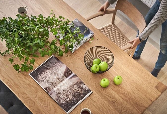 Cây xanh đặt trên bàn, nhằm tăng sinh khí cho căn phòng