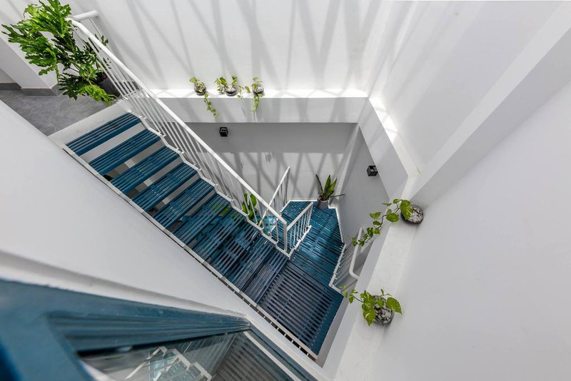 Cây xanh điểm tô những bậc thang trong nhà