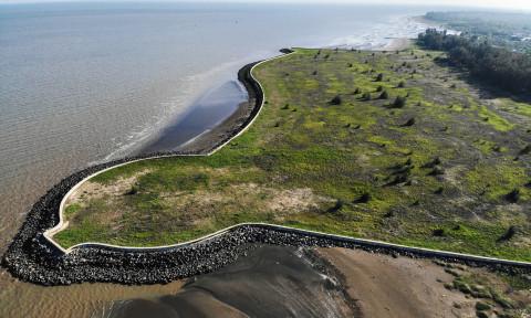 Tác động của Dự án lấn biển Cần Giờ đến khu dự trữ sinh quyển rừng ngập mặn