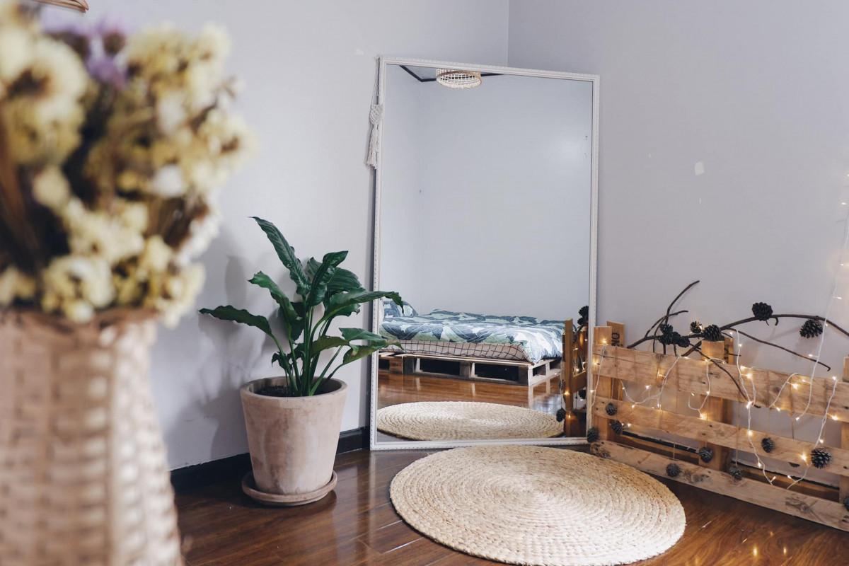 Mang thiên nhiên vào không gian sống giúp căn phòng không cửa sổ thêm thoáng đãng