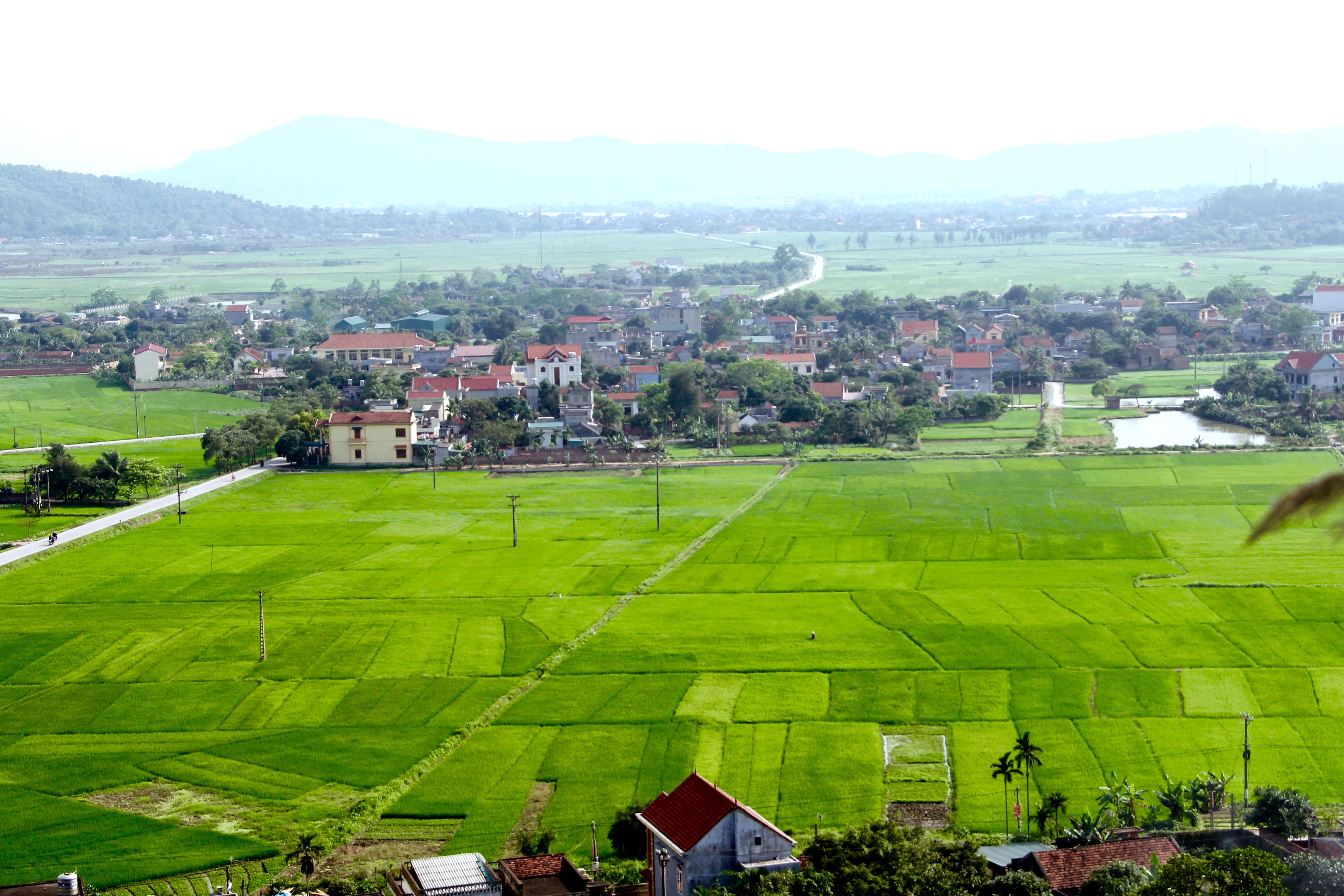 Quy hoạch và xây dựng Nông thôn mới để trở thành những vùng quê đáng sống