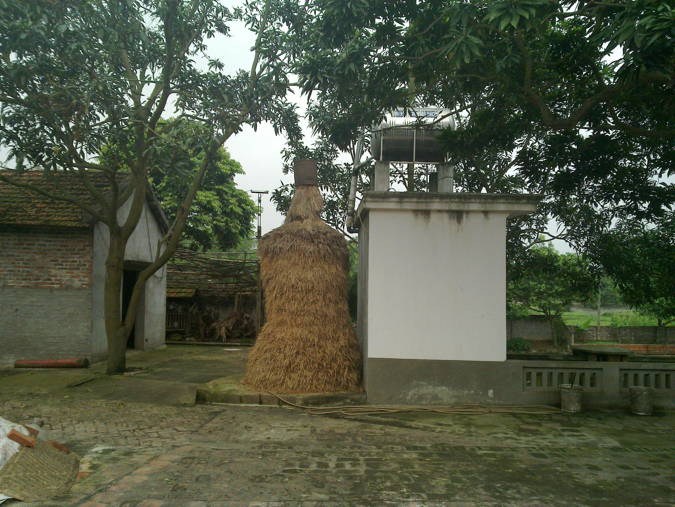 Nhà ở nông thôn sử dụng nước sạch, nhà vệ sinh theo xu thế mới