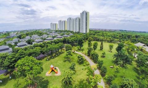Hà Nội: Chưa đạt được mục tiêu thành phố xanh