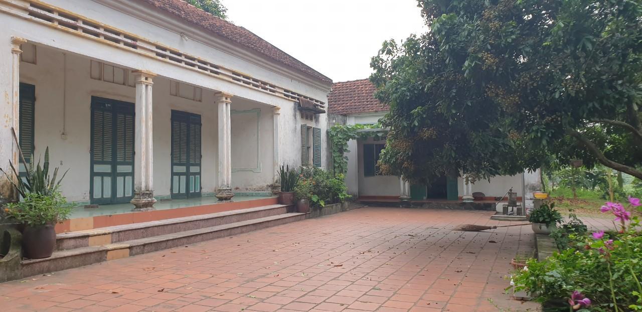 Khuôn viên nhà ở phù hợp với môi trường xanh