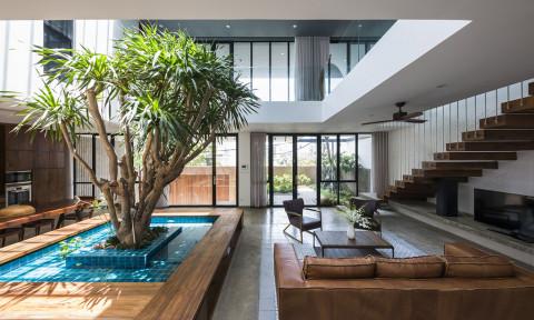 Patio House – ngôi nhà với sân trong làm trung tâm