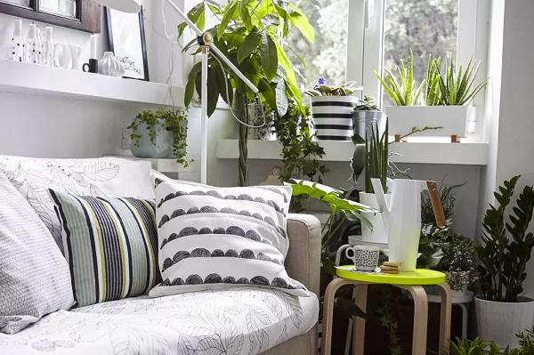 Các loại cây màu xanh lá đậm sẽ tạo không gian xanh cho góc trống trong nhà. Hãy sắp xếp cây ở các độ cao khác nhau bằng cách sử dụng kệ và ghế đẩu