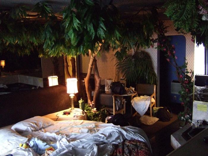 Một thiết kế mang thiên nhiên sinh động vào phòng ngủ.