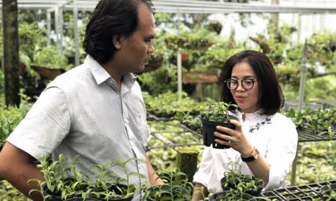 TP Hồ Chí Minh xây dựng nông thôn mới gắn với đô thị hóa nông thôn