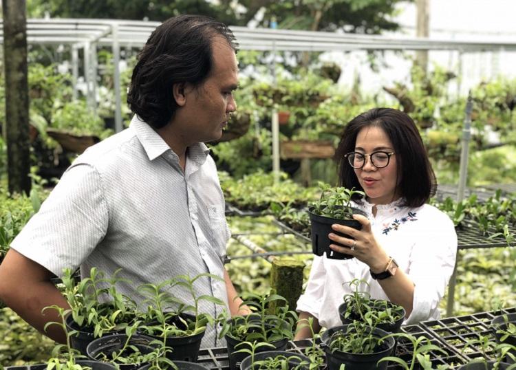 TP Hồ Chí Minh áp dụng các kỹ thuật tiên tiến để phát triển nông nghiệp công nghệ cao. Ảnh: CTV