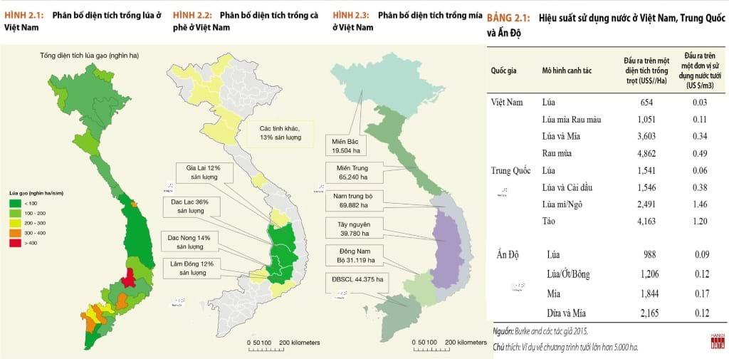 Việt Nam không chỉ trồng lúa mà đã phát triển nhiều vùng sản xuất nông sản mới. Nguồn: WB