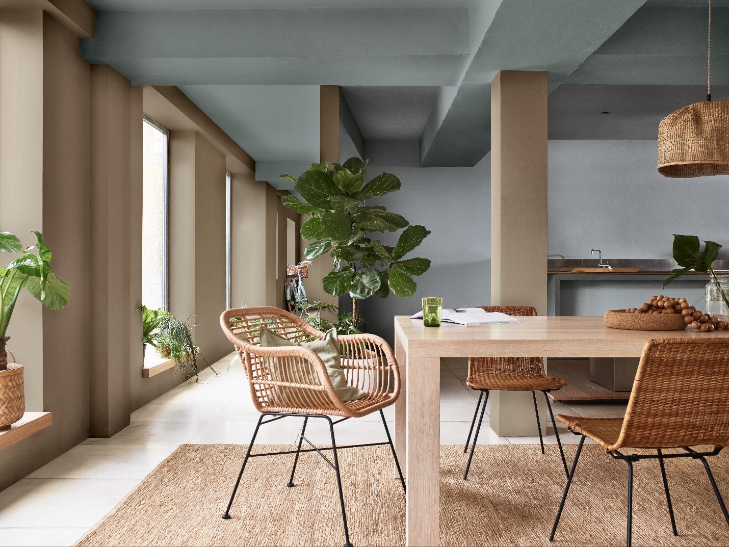 Trồng cây xanh trong nhà là cách đơn giản để lọc không khí